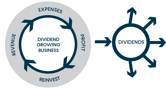 Dividend Growth Graphic